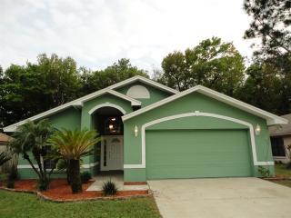 2925 Wilder Creek Cir, Plant City, FL 33566