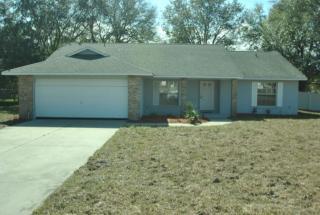 10200 Joanies Run, Leesburg, FL 34788