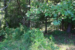 2114 Upper Hilham Rd #5, Livingston, TN 38570