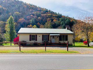 173 Chestnut St, Cross Fork, PA 17729