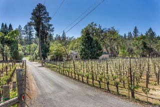 102 Lilac Ln, Saint Helena, CA 94574