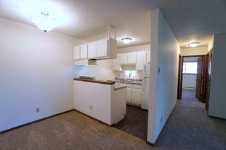 8217 W 30 1/2 St, Minneapolis, MN 55426