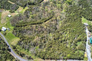 Blue Springs Rd, Mohawk, TN 37810