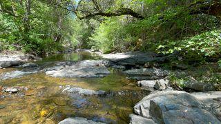 Sutter Creek Rd, Sutter Creek, CA 95685