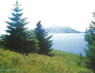 Nhn Viekoda Bay, Pt Lions, AK 99550