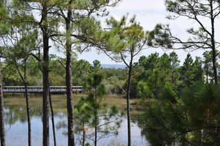 10 Mar A Lago Blvd, Santa Rosa Beach, FL 32459