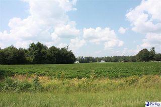 1 Durant Cemetery Rd, Johnsonville, SC 29555