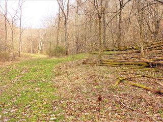 Maple Run Run, Looneyville, WV 25259