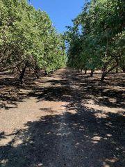Cantua Crk, Cantua Creek, CA 93608