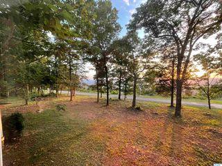 728 County Road 194, Bryant, AL 35958