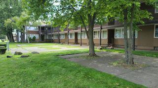 16561 Greenfield Rd #207, Detroit, MI 48235