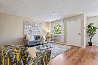 3939 Monroe Ave, Fremont, CA 94536