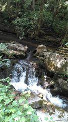 Duck Creek Rd, Sneedville, TN 37869