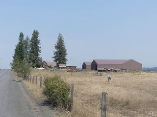 1831 Cemetery Rd, Weippe, ID 83553