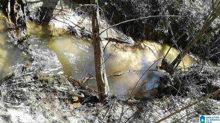 County Road 16, Sweet Water, AL 36782