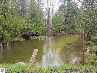 Lot 1 Birch View Trl #1, Lake Ann, MI 49650