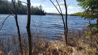 Forest Road Cp #203-5, Brookston, MN 55711
