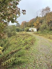 684 Cape Horn Rd, Stamford, NY 12167