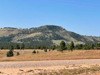 Mountain Ave, Custer, SD 57730