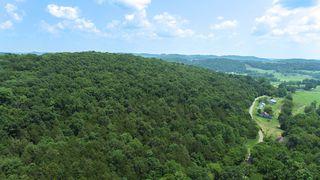 Winfree Ln, Brush Creek, TN 38547