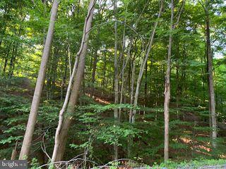 1009B Six Mile Run Rd, Six Mile Run, PA 16679
