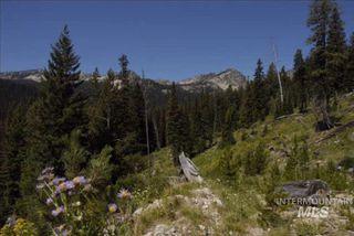 Big Creek Rd, Yellow Pine, ID 83677