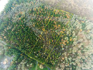 287 Pine Tree Rd, Toledo, WA 98591