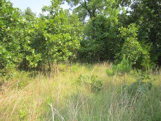 County Road 462, Birch Tree, MO 65438