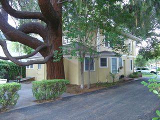 221 Hawthorne Ave, Palo Alto, CA 94301
