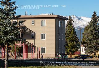 1531 Mount Lincoln Dr E #66, Leadville, CO 80461