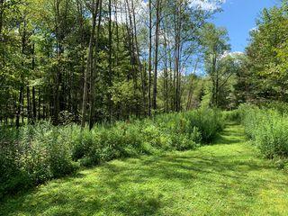 Sycamore Ln, Marienville, PA 16239