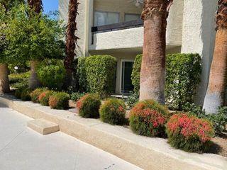 1552 S Camino Real #134, Palm Springs, CA 92264