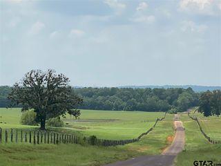 9717 County Road 415, Tyler, TX 75704