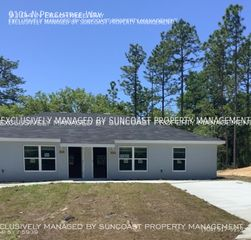 9104 N Peachtree Way, Dunnellon, FL 34434