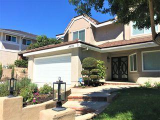 26032 Buena Vista Ct, Laguna Hills, CA 92653