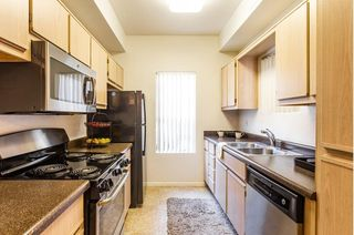2900 W Highland St, Chandler, AZ 85224