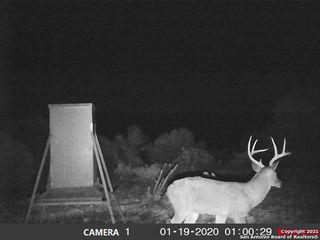 950 Buck Trl, Barksdale, TX 78828