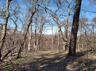 644 Mountain Loop Rd, Thorn Hill, TN 37881