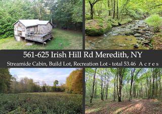 561-625 Irish Hill Rd, Delhi, NY 13753