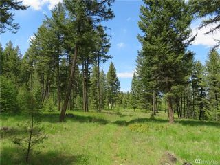 Kettle River Rd, Curlew, WA 99118