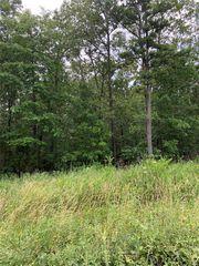 County Road 315, Ellsinore, MO 63937