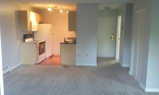 3150 Iris Ave #208, Boulder, CO 80301