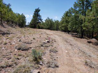 885 E Forest Service Rd #512, Young, AZ 85554
