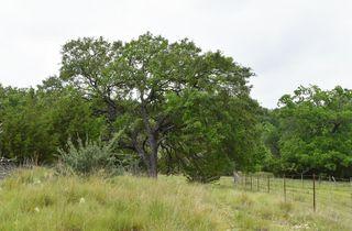 195 Schmidt Anderegg Rd, Fredericksburg, TX 78618