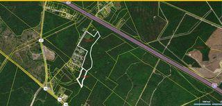 Sampson Rd, Ridgeville, SC 29472