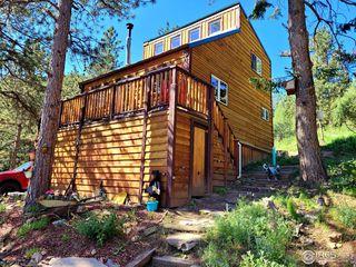 1118 Palisade Mountain Dr, Drake, CO 80515