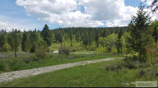 Snake River Rd, Swan Valley, ID 83449