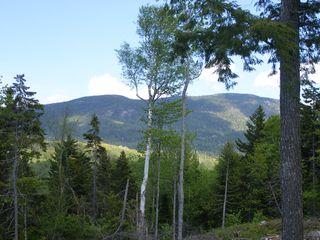 Mountain Rd #2004, Stratton, ME 04982