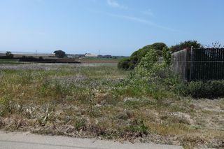 Bluff Rd, Moss Landing, CA 95039