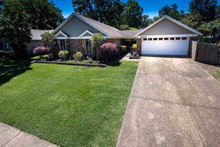 5805 Pinola Ave, Memphis, TN 38134